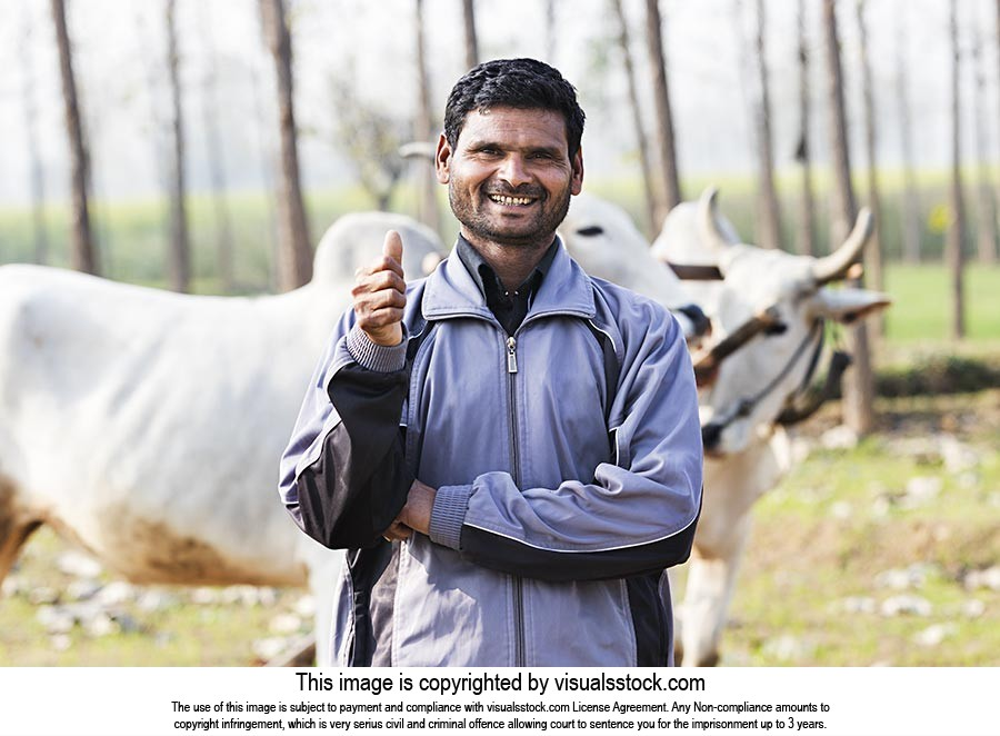 Happy Rural Farmer Man Field Thumbsup Success