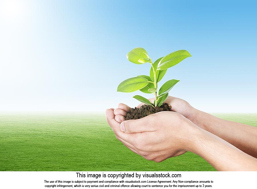 Save Environment Part-of Plant life Plan