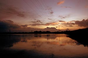 Absence ; Backwater ; Beauty In Nature ; Cable ; C