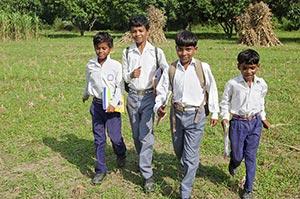 3-5 People ; Agriculture ; Backpack ; Bag ; Bondin