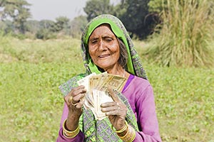 Rural Old Woman Farm Money Counting