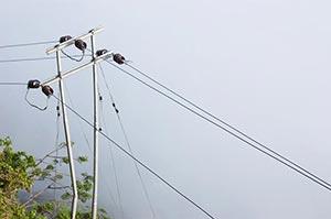 Cable ; Cloud ; Color Image ; Connection ; Cumulus
