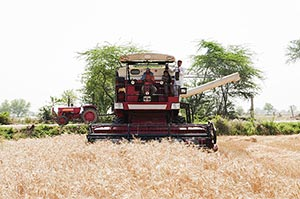Indian rural Farmer harvesting machine in village