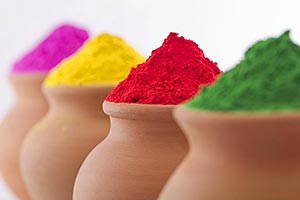 Holi Festival Colour Indian