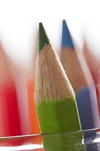 Arranging ; Arts ; Close-Up ; Color Image ; Colour