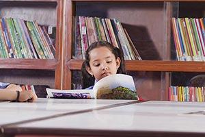 1 Person Only ; Bonding ; Book ; Bookshelf ; Caref