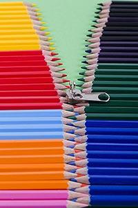 Abundance ; Arranging ; Bizarre ; Close-Up ; Color