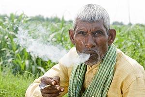 Indian Man Farmer Smoking