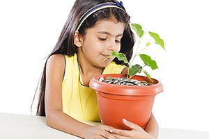 Little Girl Potted Plant Growing Pile Coins