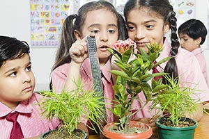 School KIds Students Measuring Plant Height
