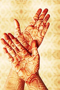 Traditional Indian Bride Mehndi Designs Showing