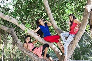 3-5 People ; Balance ; Bonding ; Branch ; Carefree