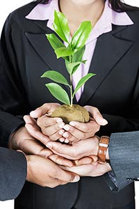 Businesspeople Plant Life Environmental-Concern To