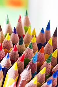 Abundance ; Arranging ; Arts ; Bunch ; Close-Up ;