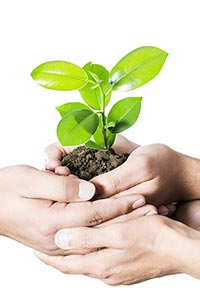 Awareness Environmental-concern Part-of Plant-life