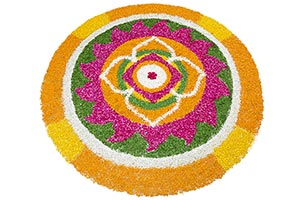 Flowers Rangoli design on white background in Diwa