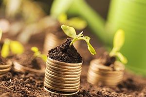Abundance ; Banking and Finance ; Bizarre ; Busine