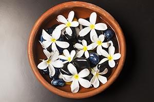 Abundance ; Arranging ; Assortment ; Beauty ; Bowl